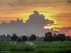 copie-1712.jpg (petiron) Tags: cambodge 2014 battambang kh