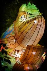 Chameleon (Seeing Visions) Tags: 2018 unitedstates us losangelescounty la arcadia laarboretum moonlightforest chineselanternfestival night dark colorful cloth light chameleon lizard raymondfujioka