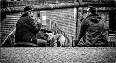 Men's Best Friend (Andy J Newman) Tags: berlin beer olympus man silverefex smoke river street men dog smoking bgermany east om candid omd germany de monochrome blackandwhite