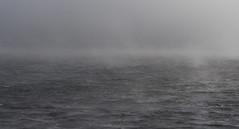 raw beauty (maikepiel) Tags: portugal nature landscape sea meer ocean landschaft fog mist nebel raw rauh grey grau wellen waves