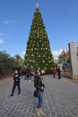 DSC_8075 (eliedata) Tags: emily aboujaoude elie yolla boujaoude jbeil byblos lebanon