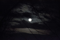 (rocket19919) Tags: moon evening clouds