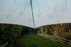 52 in 2019 challenge - 6. A Rainy Day (Christine Schmitt) Tags: rain rainy umbrella blue sky garden 52in2019