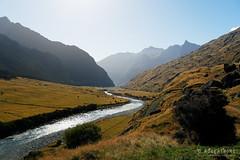 20190207-09-Way out of valley (Roger T Wong) Tags: 2019 nz newzealand rogertwong sel24105g sony24105 sonya7iii sonyalpha7iii sonyfe24105mmf4goss sonyilce7m3 southisland westmatukitukivalley bushwalk hike landscape outdoors tramp trek valley walk