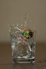 48/365 (misa_metz) Tags: nikon tokina water glass ball pohoto photography indoor macro colors color