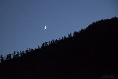L'essenziale (antoniomolitierno) Tags: notte night luna moon mood umore bosco wood montagna canon eos 760d silhouette foresta forest mountain cielo sky alberi tree essenziale essential