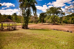 Ceremonial Park Caguana. (Toñito Alvarez Photography) Tags: indigenas indigenous park parque ceremonial turismo tourism puertorico utuado indios indians nativos native
