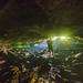 Fern Grotto Interior
