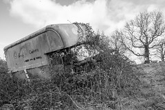 an ending (SCRIBE photography) Tags: uk england dorset scrap scrapyard junk junkyard rust decay entropy lost forgotten abandoned van vehicle car lorry truck retro monochrome black white plants weeds overgrown tree cadbury cakes delivery