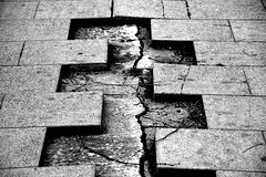 Street puzzle (jaume zamorano) Tags: abandoned blackandwhite blancoynegro blackwhite blackandwhitephotography blackandwhitephoto bw d5500 ground lleida lines monochrome monocromo nikon noiretblanc nikonistas pov street streetphotography streetphoto streetphotoblackandwhite streetphotograph urban urbana