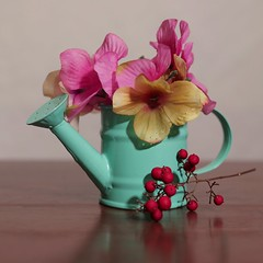 Vase with Flowers and Berries (N.the.Kudzu) Tags: tabletop stilllife pitcher vase flowers red berries canoneosm canoneflens photoscape