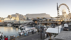 A view of Table Mountain from Victoria and Alfred Waterfront (Hernan Linetzky Mc-Manus) Tags: capetown southafrica wild linetzky ciudaddelcabo