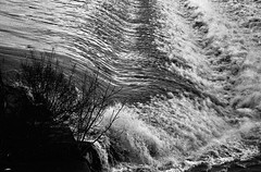 Arno in Florence (michele.palombi) Tags: arno florence piena film 35mm analogic tuscany