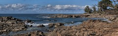 Sharks Cove 1 Haleiwa HI (Fletch in HI) Tags: nikon d5600 tamron 16300 pano clouds oahu hawaii haleiwa sea ocean sky rocks tree