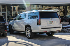 2017 Cadillac Escalade ESV (Rivitography) Tags: 5lgt61 mi cadillac escalade suv 4x4 american gm generalmotors caddy luxury expensive greenwich connecticut 2019 canon 60d adobe lightroom rivitography