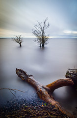 Lough-Neagh County Antrim Northern Ireland - Two Trees Submerged In Water Made For A Nice Long Exposure (william_young81@yahoo.co.uk) Tags: loughneagh countyantrim antrim northernireland northernirelandphotographer trees lonetrees longexposure polariser filters leefilters amateurphotographer nikon nikond5600 nikonphotography seascape landscape