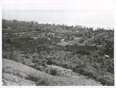 A view from Mount Maunga Roa showing Arorangi Village, Rarotonga 1969