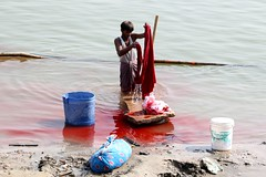 red river (daniel virella) Tags: picmonkey man workers laundry clothes red river shore bank ghat ganges ganga गंगा varanasi benares वाराणसी india भारत bharat desi uttarpradesh उत्तरप्रदेश