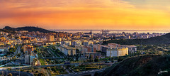 Tardes de Navidad a finales de 2018 en Malaga (Juan-Chaves) Tags: horizonte horizon montañas mountains ciudad city skyline cityscape malaga andalucia andalusia españa spain europa europe atardecer sunset crepusculo twilight mar sea cielo sky nubes clouds pajaros birds volando flying edificios buildings catedral cathedral naturaleza nature arboles trees plantas plants carreteras roads coches cars trafico traffic rio river puente bridge puerto port muelle docks noria ferriswheel estadio stadium alcazaba citadel castillo castle gibralfaro torre tower