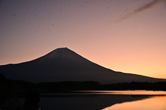 The dawn is breaking. (Yuzu Tama) Tags: model mtfuji mtfujiwhc japan shizuoka fuji todays dayliphoto instadaily photogenic igjapan loversnippon worldcaptures flickrfriday welovef radiof ftimes 2018 genicmag genictravel geniclife genicblue genicjapan genicphoto genictown genicsummer tabijyo tabijyosummer tabijyomaptwn tabijyotravel ybs2018 flickr heroes nikkors auto 28mm f35