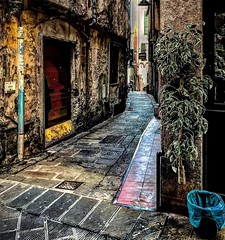 """Street Trash"" (giannipaoloziliani) Tags: narrowstreets europe liguria lightandshadow italy focalpoint alleys vicolidigenova hard walls flickr urbandecay urbanstreet strange colors iphone iphonephotography genova genoa alleysofgenoa vicoli view capturestreets caruggi oldstreet old streetphotography hdr suburbs periphery urbanexplorer decay"