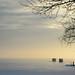 Cold Silence - Le silence du froid