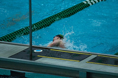 142A1265 (Roy8236) Tags: gmu american old dominion swim dive