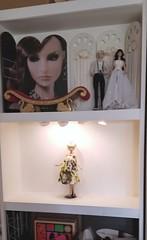 Today's project: Photo Shelf BEFORE (JennFL2) Tags: fashion doll photography photo setup shelf shoot setting lighting