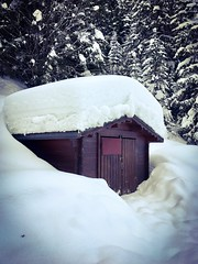 Sweet frozen home ... (Navis06) Tags: winter hiver cold froid mountain montagne blanc white snow neige wood bois chalet