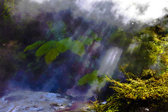 Water Vapor, Waimangu Volcanic Valley, Rotorua,  North Island, New Zealand (klauslang99) Tags: artistpalette attraction attractions boiling bubblingpool bubblingpools bubblingspring bubblingsprings day destination destinations geothermal geothermalactivity geothermalsite horizontal hot hotspring hotsprings hotwater landscape landscapescene landscapes mist natural nature newzealand nobody northisland outdoor outdoors outside pool pools rotorua scenery scenes scenic scenics steam steamy thermal thermalwonderland tourism waimangu warm water klauslang