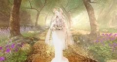 I pray. (Liliumrubellum) Tags: secondlife white elf albino lostunicorn fantasy fairytale