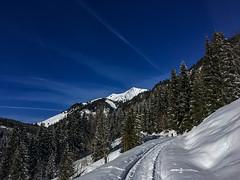 way up (genelabo) Tags: sonnwendjoch mangfallgebirge hinteres tirol bayerischen voralpen brandenberger alpen alps mountain berge sky blue himmel sun sonne view skitour skiing ski blau
