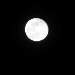 Full Moon,Aberdeen_Feb 19_785 (Alan Longmuir.) Tags: misc sky grampian aberdeen moon fullmoon night