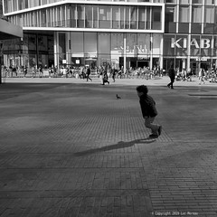Pigeon Race (Spotmatix) Tags: 1232mm belgium brussels camera effects lens monochrome omdem10ii olympus places street streetphotography zoomstd
