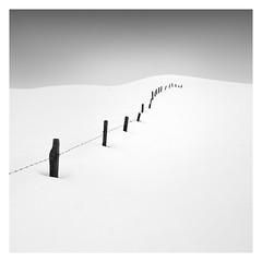 Winter - Endless [On Explore] (Marco Maljaars) Tags: marcomaljaars pole minimalism minimal mood empty barb wire snow winter cold monochrome blackandwhite bw fineart landscape ice old row posts