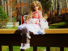 Like My New Outfit? (Forest_Daughter) Tags: volks dollfie dream sister mayu bjd balljointed doll
