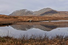 Lochan (Deepgreen2009) Tags: lochan reflection scottish rannochmoor water wilderness remote mountains
