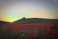 Alfombra roja... (rayito1986) Tags: rojo red castle castillo paisaje landscape sun sol atardecer sunset
