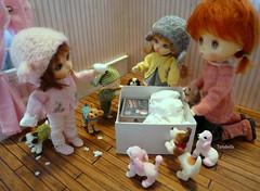 Happy Mail Day!! (TutuBella) Tags: shannonslilcritters snowman snow snowmankit jerryberry fig pukifee emmi tilly realpuki button fairyland daisydayes puppy puppies iplehouse dog dolls bunnycardigans madebybarbara fun friends friendship tinybjd