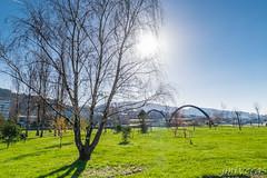 Sol de Diciembre (JMFVERAS) Tags: 2018 paseo jubia diciembre december narón
