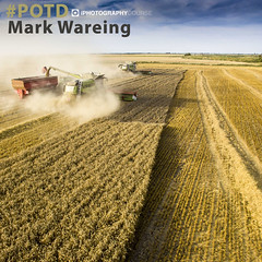 #POTD Mark Wareing (iPhotographyCourse) Tags: drones flying cameras farming crops harvest countryside tractors farm yellow oats wheat autumn english dust green red blue sky field life work iphotography photographytutorial photographer photography photoshop photomanipulation photo photographygame photographycompetition composition elearning exposure learn learnphotography distancelearning iphoto learning learnfromhome photographyblog photographyclass photographytips photocourse potd newphotographer newbie camera competition weeklychallenge portraits