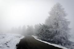 Street (Lolo_) Tags: dévoluy joueduloup ice fog brouillard givrant givre hautesalpes route street road