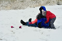 "Playing in the Snow:  ""Push, then hop on.  OK?"" (Ginger H Robinson) Tags: play snow snowstorm snowfall snowflakes sledding rockymountain frontrange colorado winter"