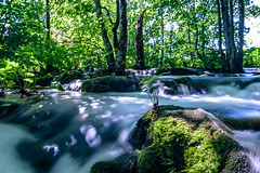 Parting-the-waters.jpg (yobelprize) Tags: plitvicelakes rock spring woods water yobelmuchang mossystone background trees plant wild tree scenic hikingviews wood partingwater outdoors lowangle jungle nationalpark flowingwater moss fresh croatia green fall nature leaf longexposure forest silkywater plitvicelakesnationalpark beautiful river landscape freshness waterfall park plitvice yobel tropical stream