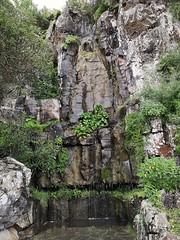 Jardín Canario Las Palmas de Gran Canaria (Rafael Gomez - http://micamara.es) Tags: cascada jardín canario botánico viera y clavijo las palmas de gran canaria botanico jardin