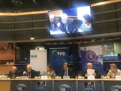 """Dialog międzyreligijny i międzykulturowy EPL- Konferencja """"The next day in Syria"""".  Parlament Europejski, Bruksela 3.04.2019"""