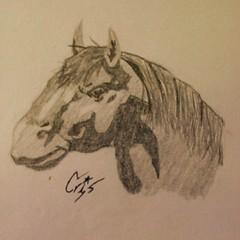 Retrato de Epona (Xtina_05) Tags: dibujo alapiz grafito caballo retrato animal arte
