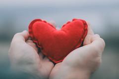 #Heart (Inka56) Tags: lookingcloseonfriday heart hands dof closeup red