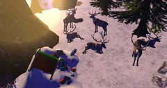 Santa we have a problem! (Osiris LeShelle) Tags: secondlife second life avilion medieval fantasy roleplay winter snow heart santa reindear crash oo problem