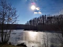 WINTER SUNSHINE #sun #sunshine #ice #frozen #lake #lakescape #landscape #Landschaft #trees #bluesky #love #Photographie #photography (benicturesblackwhite) Tags: love sunshine photographie frozen bluesky ice sun trees landschaft lake landscape photography lakescape